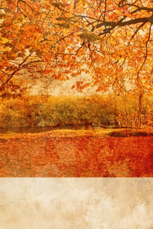 Autumn in the park grungy background with orange leaves photo