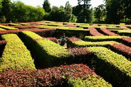 Natural Maze photo
