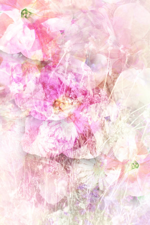 Pretty summer flowers grungy background in white and pink stock pretty summer flowers grungy background in white and pink stock photo picture and royalty free image image 27420778 mightylinksfo
