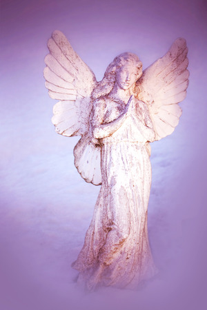 stone tombstone: A white angel praying