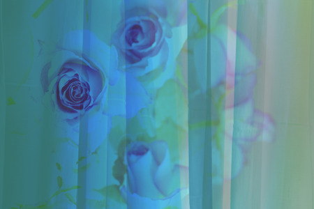 three dimension shape: Pretty abstract floral background with roses Stock Photo