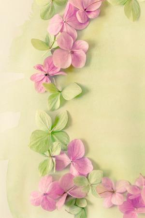 Subtile floral künstlerischen backgrodund mit Hortensiablumen Standard-Bild - 47742999