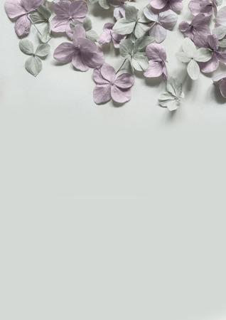 Subtile floral künstlerischen backgrodund mit Hortensiablumen Standard-Bild - 47743004