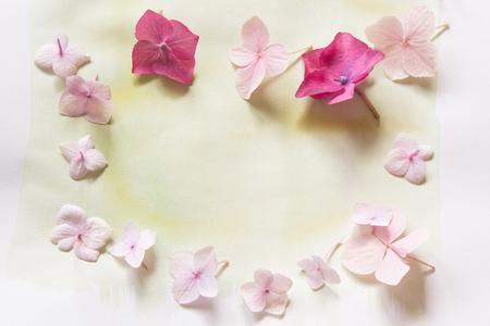 Subtile floral künstlerischen backgrodund mit Hortensiablumen Standard-Bild - 47743010