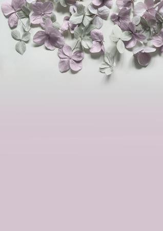 Subtile floral künstlerischen backgrodund mit Hortensiablumen Standard-Bild - 47743011