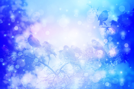 dreamy: Dreamy winter scene with starling birds sittin on the tree branches in the garden Stock Photo