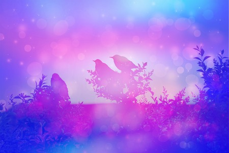manipulation: Winter scene with birds, image manipulation
