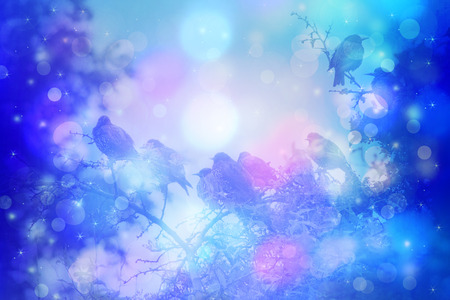 winter garden: Dreamy winter scene with starling birds sittin on the tree branches in the garden Stock Photo