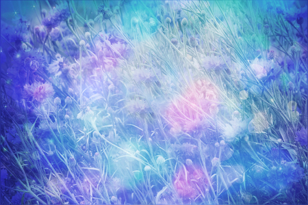 soft colors: Dreamy beautiful background with meadow of flowers