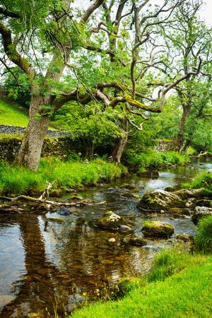 dales: Malham Beck, Yorkshire Dales, England