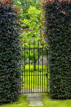 Great Beautiful Old Garden Gate With Hedges Stock Photo   54803862