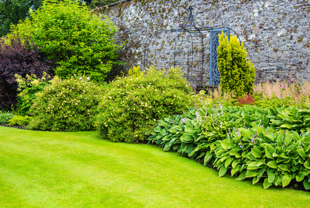 walled: Hosta plants in the walled garden Stock Photo