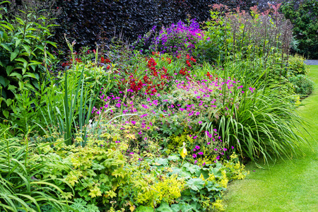 Beautiful walled garden Stock Photo