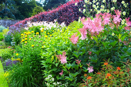 Variety of beautiful flowers in the walled garden Imagens