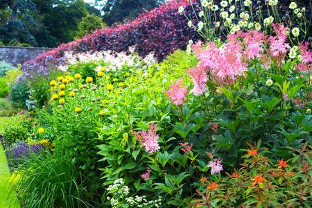 Variety of beautiful flowers in the walled garden Reklamní fotografie