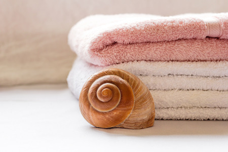 Folded towels and a seashell close up arrangement
