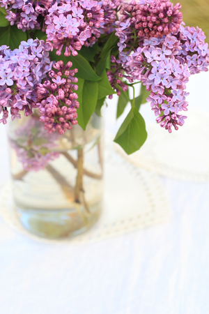 subtle background: Fresh, romantic lilac branches in a glass vase on white subtle background Stock Photo