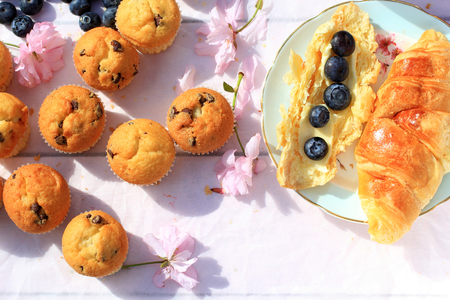scones: Rustic wooden breakfast background with bluberries, fresh scones and blooming cherry flowers Stock Photo