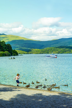 loch lomond: A child playing with ducks on summer at Loch Lomond, Luss, Scotland, UK