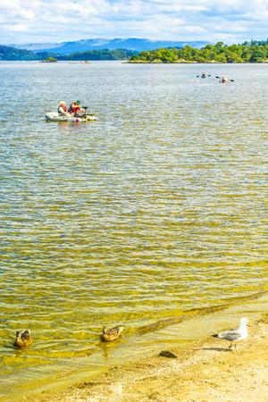 loch lomond: People rowing canoe paddling in calm blue Loch Lomond lake in Scotland