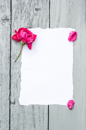 free backgrounds: Love background with copy space for text. White paper on wooden table with red rose and petals Top view.
