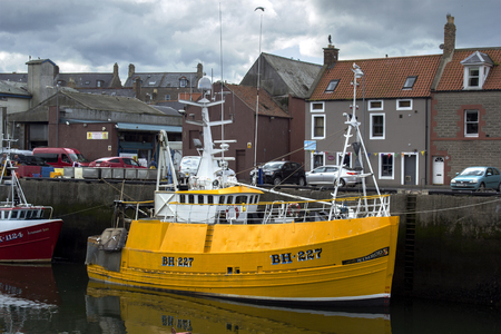 sportfishing: Boats and houses in Eyemouth, old fishing town in Scotland, UK. 07.08.2015