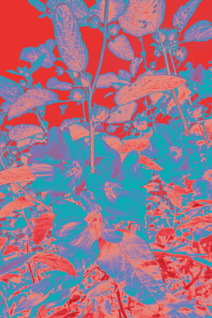 Artistic, floral background in red, pink and blue