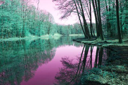 Bosque de cuento de hadas con árboles reflejados en agua rosa