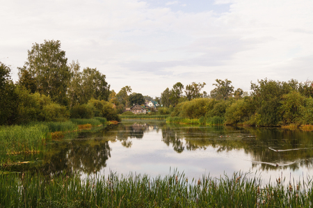 indian creek: landscape of a calm pound with a green forest around autumn