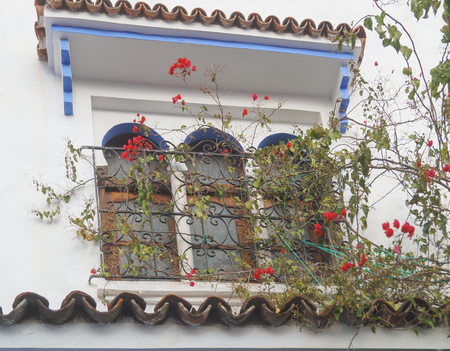 house balcony in The Blue city - Chefchaouen, Morocco