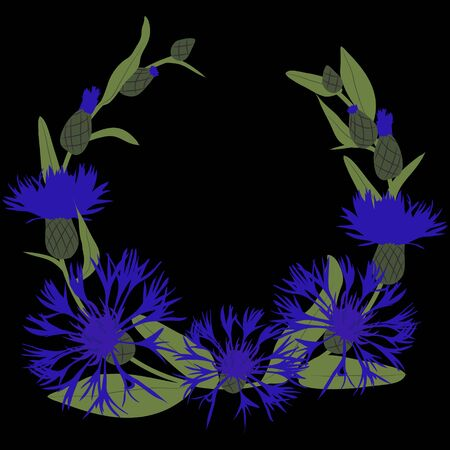 Vector illustration of a knapweed on a black background