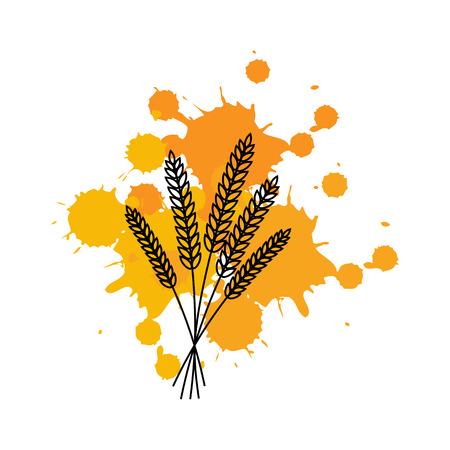 Bunch of wheat ears on ink spots.Vector illustration.Line. Illustration