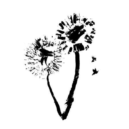 Fiore disegnato a mano su fondo bianco. Dente di leone disegnato a mano. Illustrazione vettoriale.