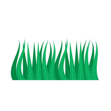 Grass icon. Silhouette of plants.High green fresh grass isolated on white background.