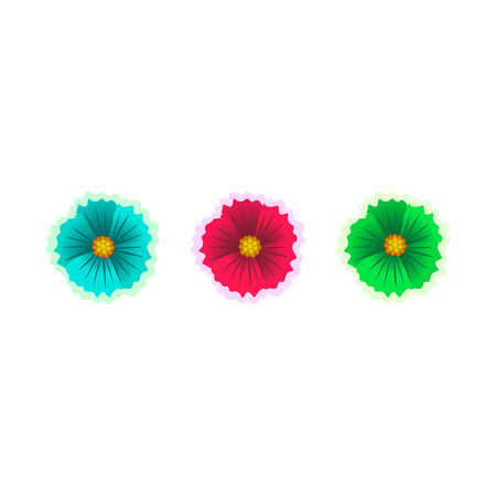 Set of Beautiful flowers isolated on white background. Vector illustration.
