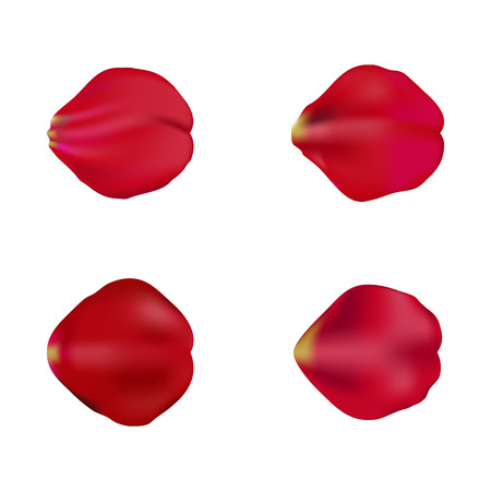 Red rose petals set, isolated on white background, vector illustration