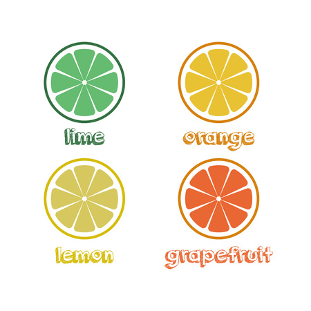 Fresh citrus fruits slices. vector illustration on white background with title Vetores