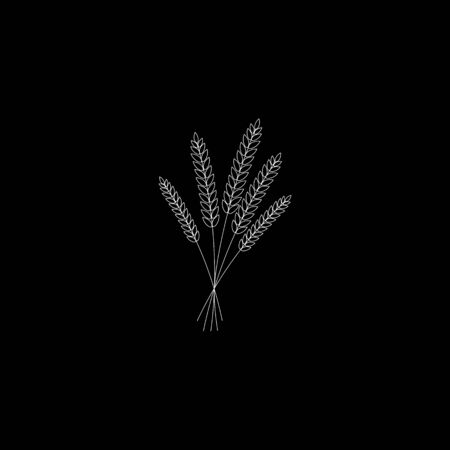 vector illustration of wheat, rye or barley ears with whole grain, line silhouette wheat, rye or barley crop harvest symbol or icon isolated on black background.