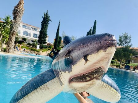 pool toy shark inflatable in swimming pool in hand with boy