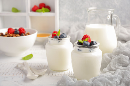 epicure: Homemade natural yogurt with blueberry and raspberry, selective focus Stock Photo