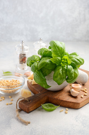 epicure: Ingredients for making green pesto sauce. Healthy Italian food. Selective focus, copy space. Stock Photo