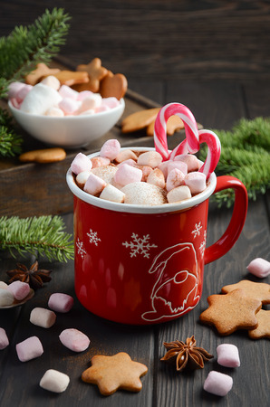 Hot chocolate with marshmallows and spices on dark wooden background. Christmas composition, selective focus.