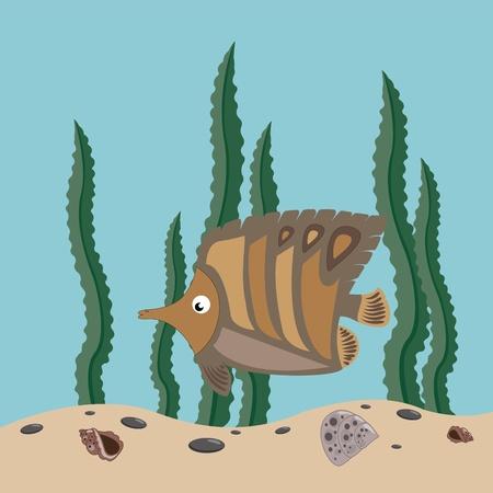 funny brown fish swims in the sea
