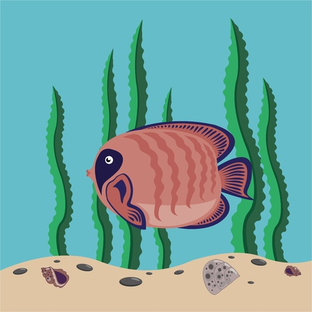 funny red fish swims in the sea Vector
