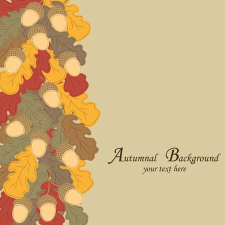 Autumn background. Multi-colored oak leaves and acorns. Vector