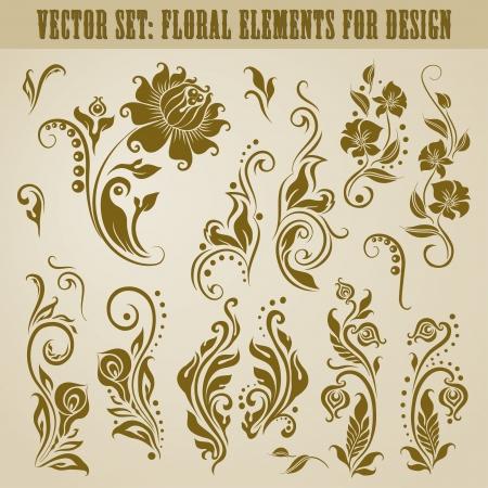 Vector set of decorative elements for design  Floral vintage collection  Vector