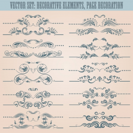 Vector set  floral decorative elements, ornamental rules, dividers  Page decoration