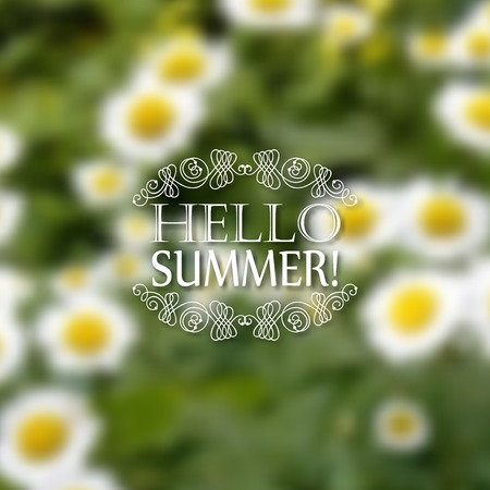 patten: Hello Summer. Typographic design with text, filigree floral frame, shadow on blurred background for greeting card, poster.