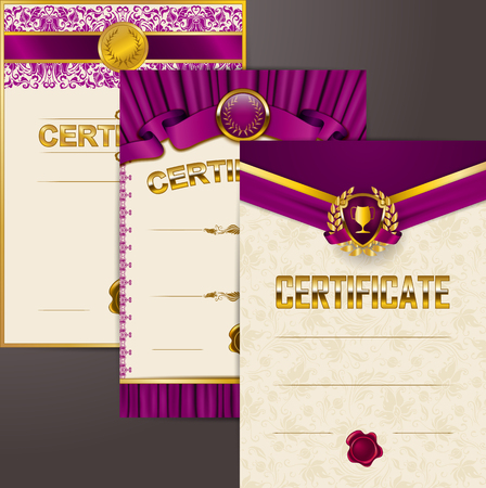 Set of elegant templates of diploma lace ornament, ribbon, wax seal, shield, gold laurel wreath, drapery fabric, place for text. Certificate of achievement, education, award, winner Vector illustration Illustration