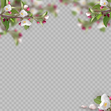 Set of realistic flowering branches. 3d green leafs, pink fresh flowers, petals, on transparent background. Vector illustration for design of site, web banner, ads, booklet, poster, card, flyer.